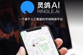 灵鸽AI智能APP,共享技能与服务,快播王欣的又一神作,灵鸽经理邀请码免费送!
