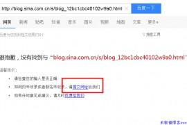 实战新浪博客推广seo优化技巧分享
