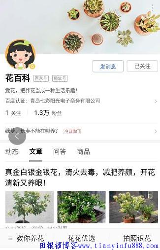 """""""熊掌号+官网""""——百度SEO布局杀手锏 seo培训 3"""