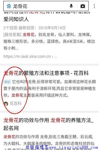 "blob.png ""熊掌号+官网""——百度SEO布局杀手锏 seo培训"