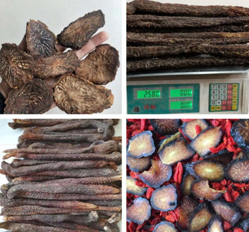 西安肉苁蓉来了-2020年阿拉善肉苁蓉价格实惠功效完美,阿拉善发货!
